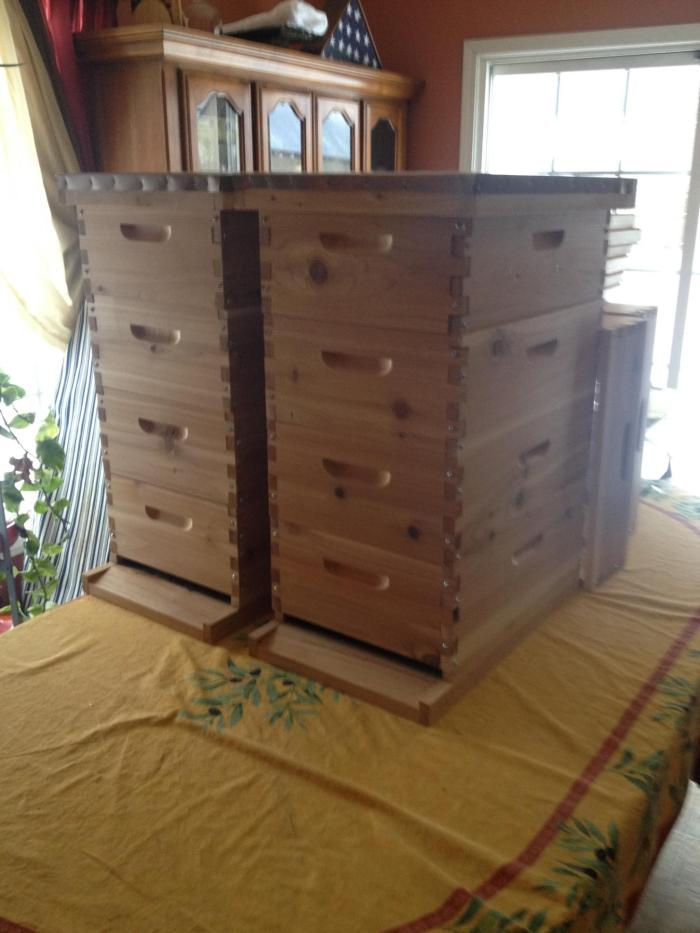 Two beehives with four medium boxes each.